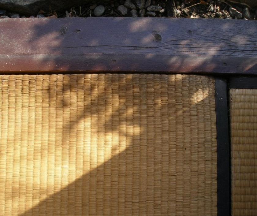 Shadows on tatami 021812